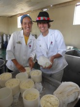 Cheese-makers