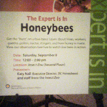 Expert-is-in-Honeybees